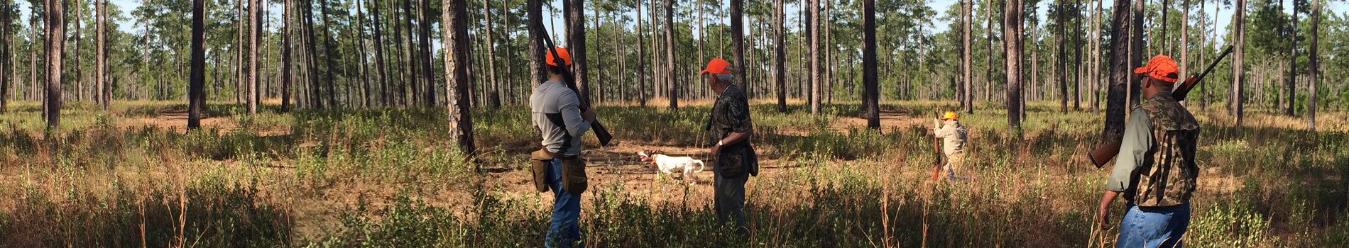 hunting on rural land