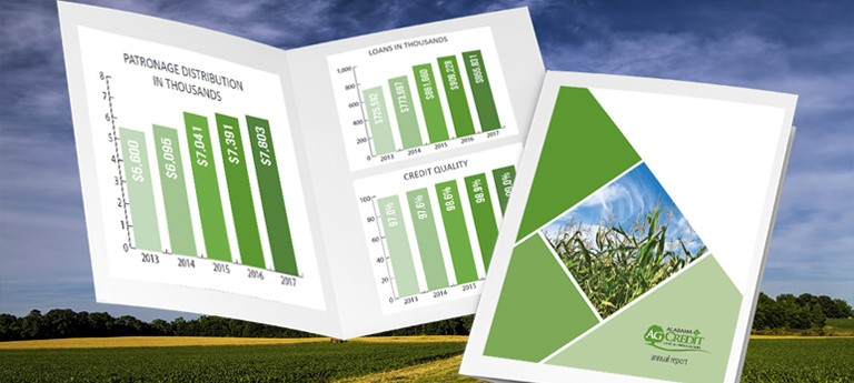 Alabama crop with a financial report graph