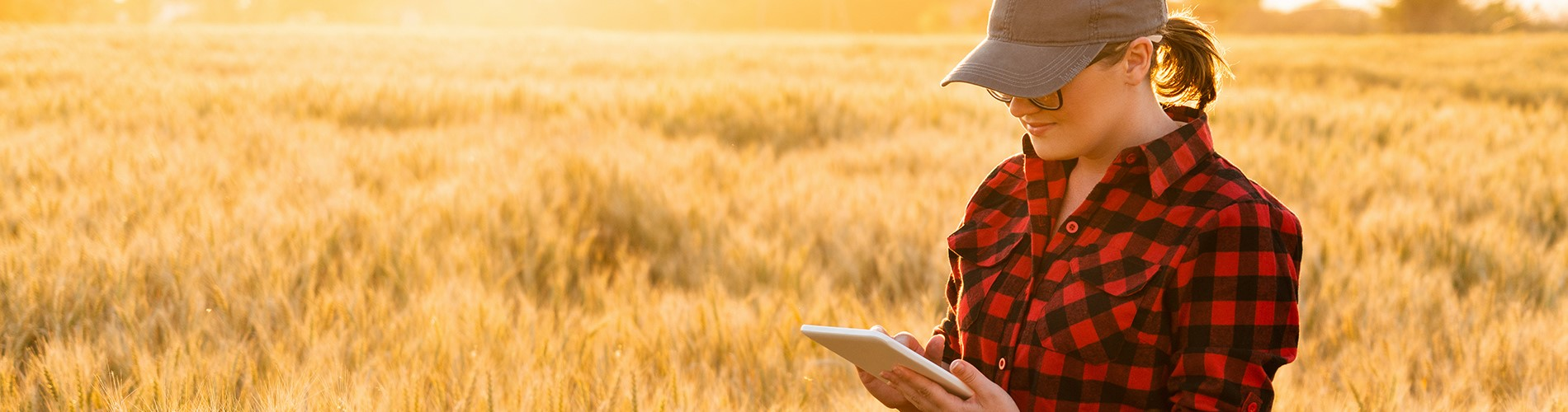 Alabama farmer banks on a mobile device